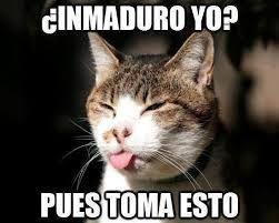 videoswatsapp.com videos graciosos memes risas gifs graciosos chistes divertidas humor http://ift.tt/2plFgUs