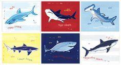 Shark Wall Art for Shark Room Shark Bedding Shark Wall