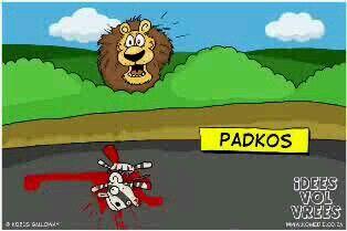 Padkos  Idees vol vrees Afrikaanse humor