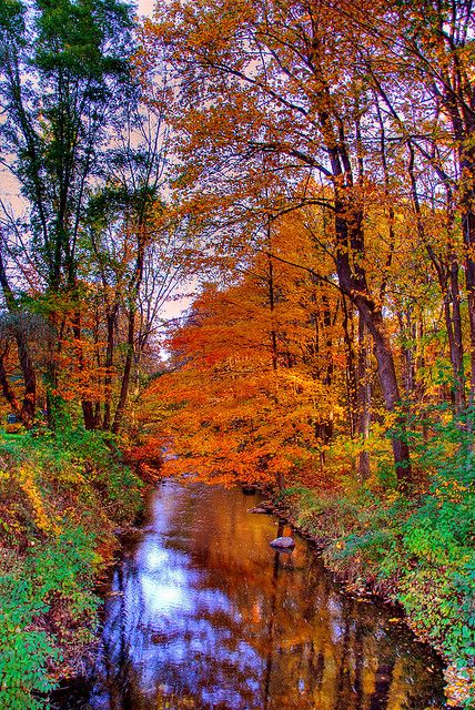 Fall on The West River, Guilford, Connecticut