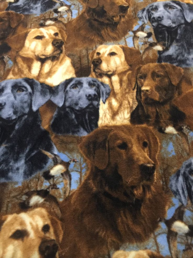 A personal favorite from my Etsy shop https://www.etsy.com/listing/540067317/labrador-dog-fleece-fabric
