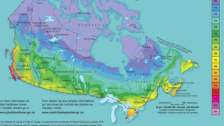 Plant hardiness zones changing, slowly