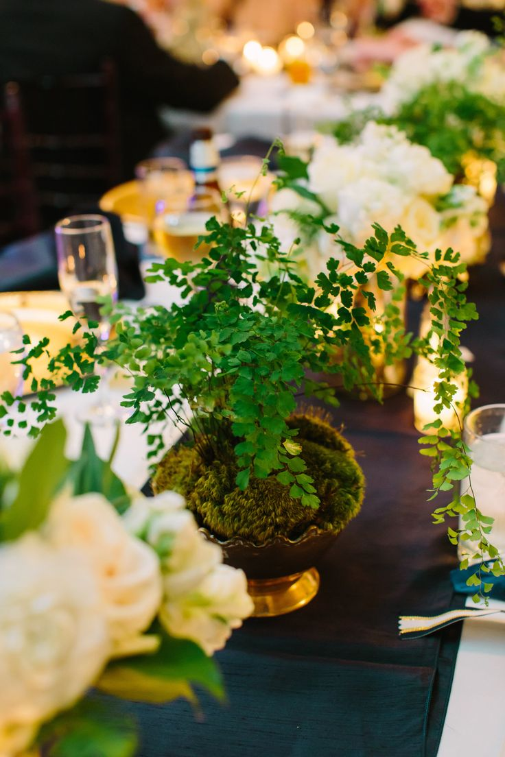 live maidenhair fern in mossed vintage brass compotes were interspersed with flower arrangements on long banquet reception tables.