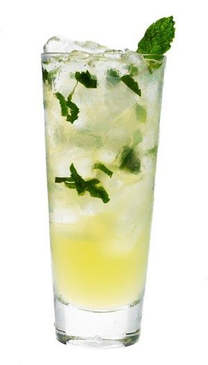 The 12 Best Low-Carb Cocktail Recipes: Sugar-Free Mojito