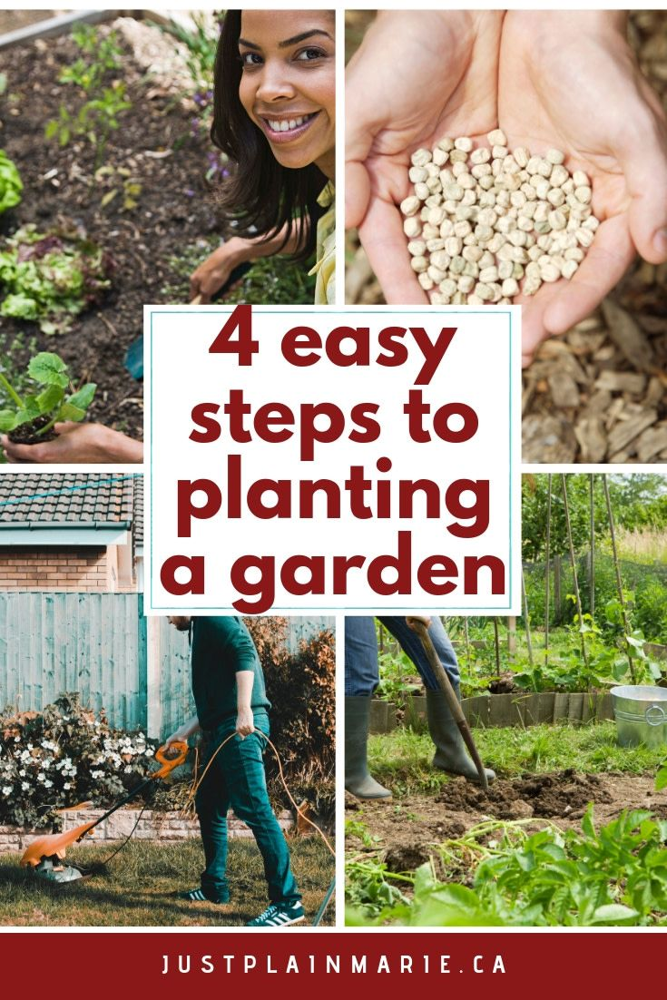 The Four Simple Steps To Planting A