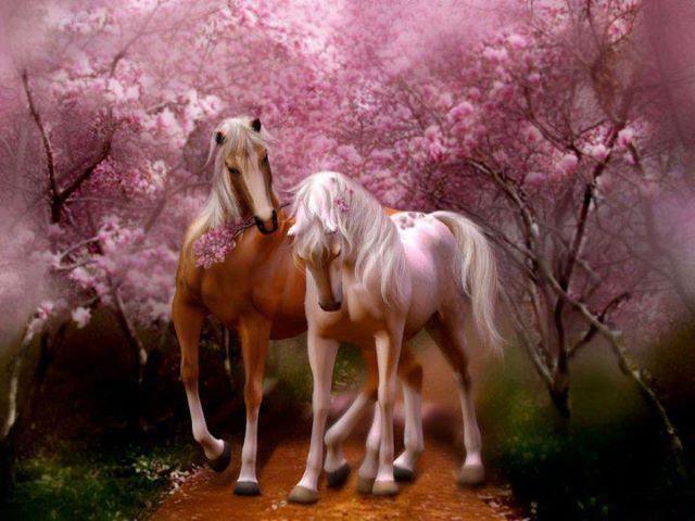 caballos hermosos