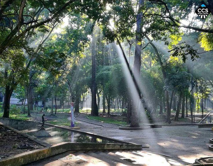 Te presentamos la selección del día: <<LUGARES: Parque Los Caobos>> en Caracas Entre Calles. Un solorayo de soles suficiente para despejar muchas sombras. Francisco de Asís 1182-1226 (Parque Los Caobos Caracas) ============================  F O T Ó G R A F O  >> @frankpereirafotos << Visita su galería ============================ SELECCIÓN @jbarreto1974 TAG #CCS_EntreCalles ================ Team: @ginamoca @luisrhostos @mahenriquezm @teresitacc @floriannabd ================ #lugares #Caracas…
