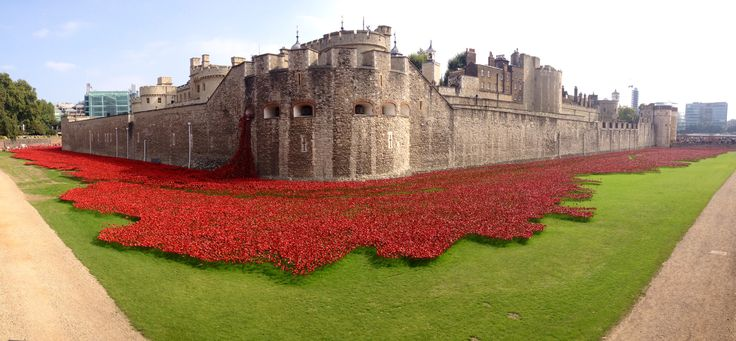 Poppies at the Tower of London. Amazing installation with volunteers planting 888,246 ceramic poppies in the dry moat, each representing a British soldier lost during World War 1