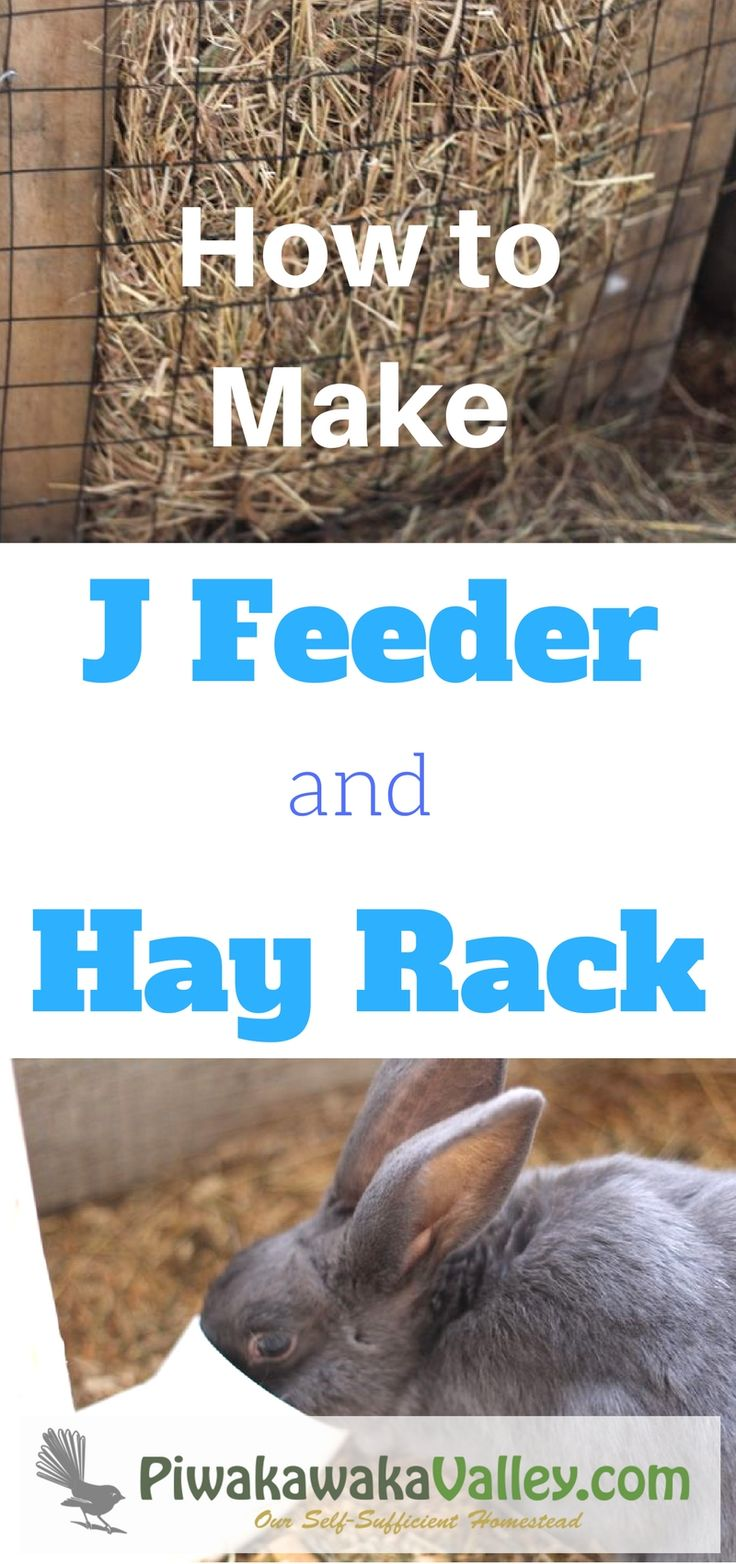 515 best images about chickens on the homestead on pinterest
