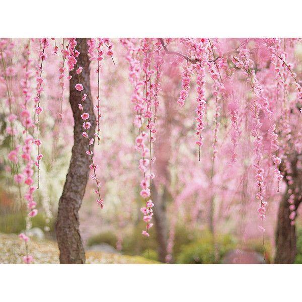28 besten Hintergrund Textur Overlay Bilder auf Pinterest ...