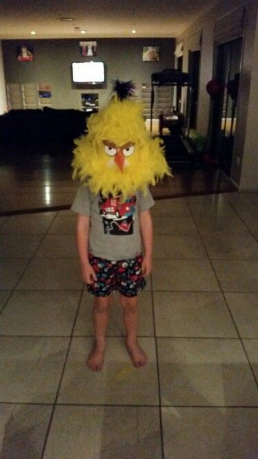 Angry birds hat for the easter hat parade. He looked awesome.