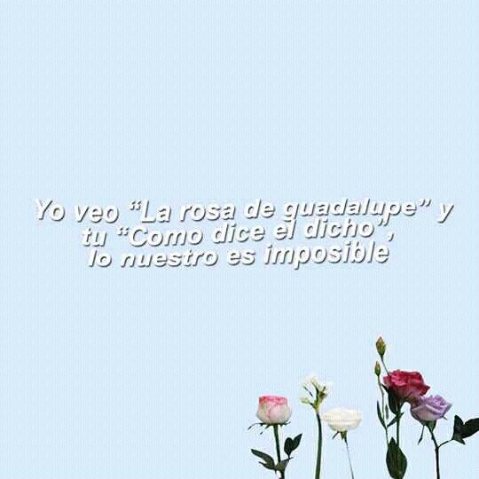 Frases Tumblr Frases Tumblr Pinterest Frases Quotes Y Sad
