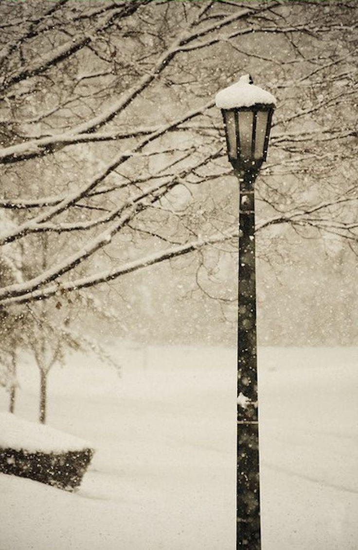 love winter.