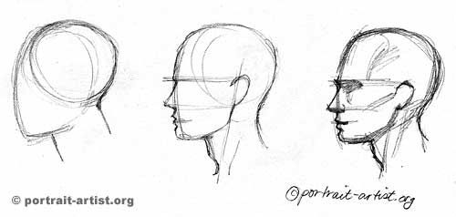 Line Drawing Of Face Profile : How to draw the profile step by drawing tuts