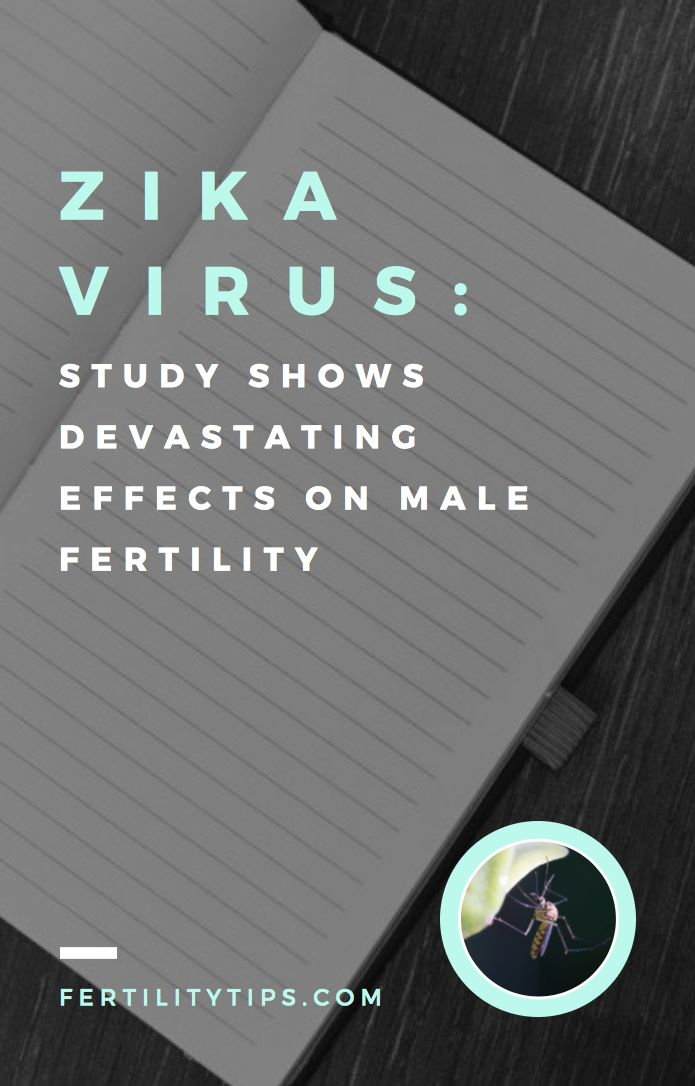 According to research, becoming infected with the Zika virus can not only cause infertility and fertility issues in men, it can make men sterile.
