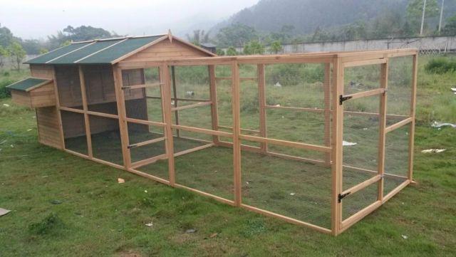 Somerzby Homestead and Run - Chicken coop, rabbit hutch, cat enclosure