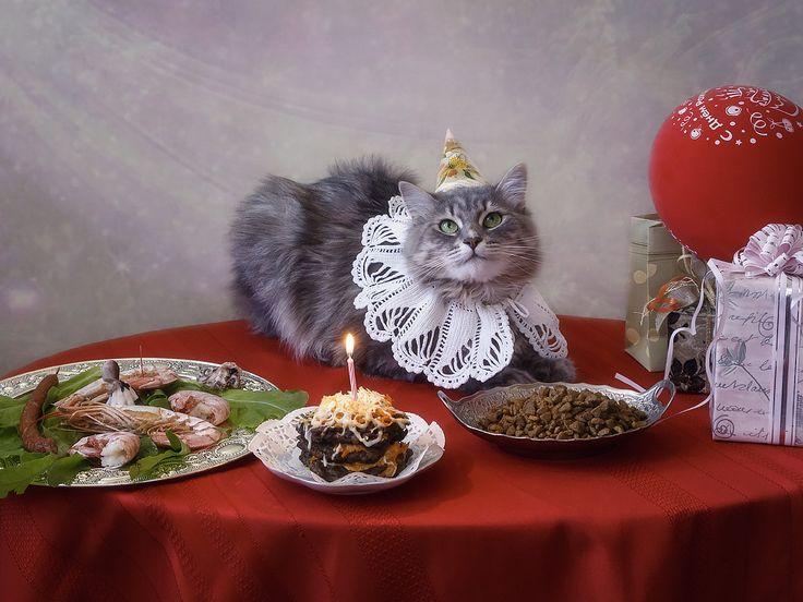 Фотограф Ирина Приходько (Irina Prihodko) - День рождения Масяни #1790985. 35PHOTO