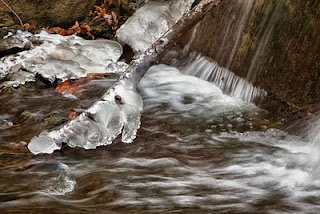 Icy Fall from Morton Arboretum in Lisle, IL.