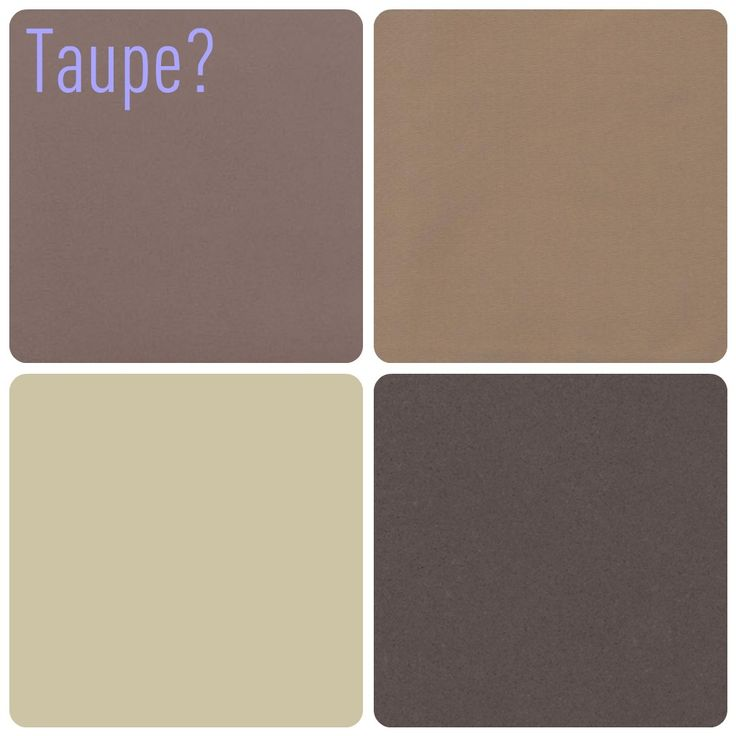 what color is taupe - 736×736
