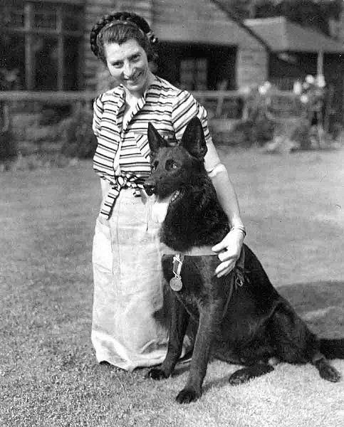 JET  Jet of Iada aka Jet (21 July 1942–18 October 1949) was an Alsatian, who assisted in the rescue of 150 people trapped under blitzed buildings. He was a pedigree dog born in Liverpool, and served with the Civil Defence Services of London. He was awarded both the Dickin Medal and the RSPCA's Medallion of Valor for his rescue efforts.    Jet was born in Liverpool in the Iada kennel of Mrs Babcock Cleaver in July 1942. He was a black Alsatian, He was loaned to be trained at the War Dogs…