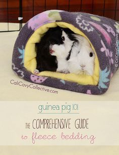 #GuineaPig 101: Fleece Bedding. Everything you need to know!