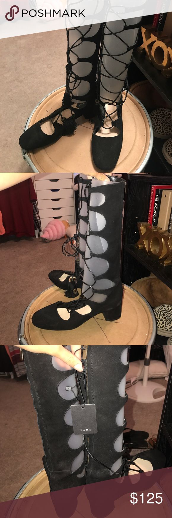 Rare Zara Lace Up Shoes Brand new never worn. Retails for about $150. Not sold in stores anymore, very rare. Zara size 11 US 41 UK. FITS LIKE A US 10* Zara Shoes Lace Up Boots