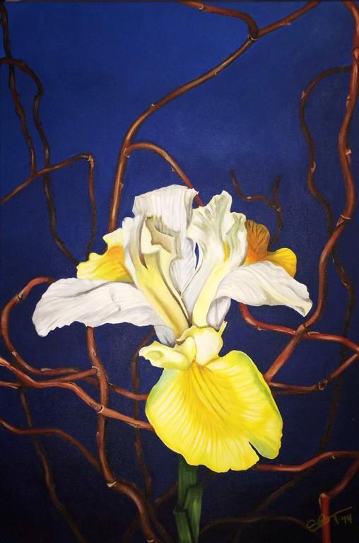 Yellow Iris - via @Craftsy