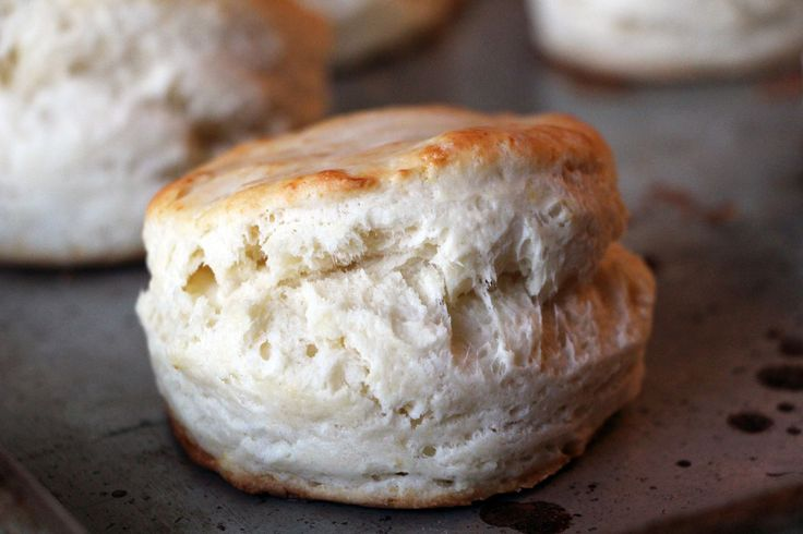 ... Spring on Pinterest | Asparagus, Baking powder biscuits and Mammals