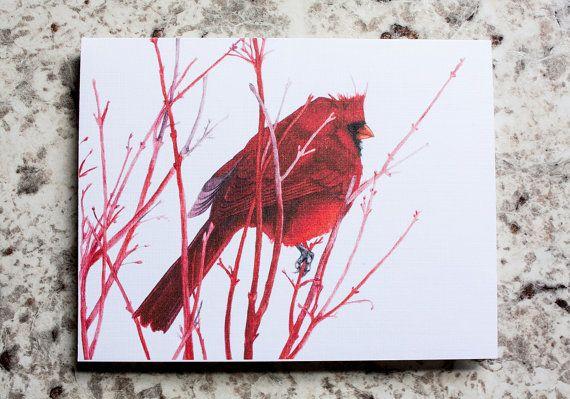 Norther Cardinal Cards  Holiday/Christmas by NatureNerdStudio
