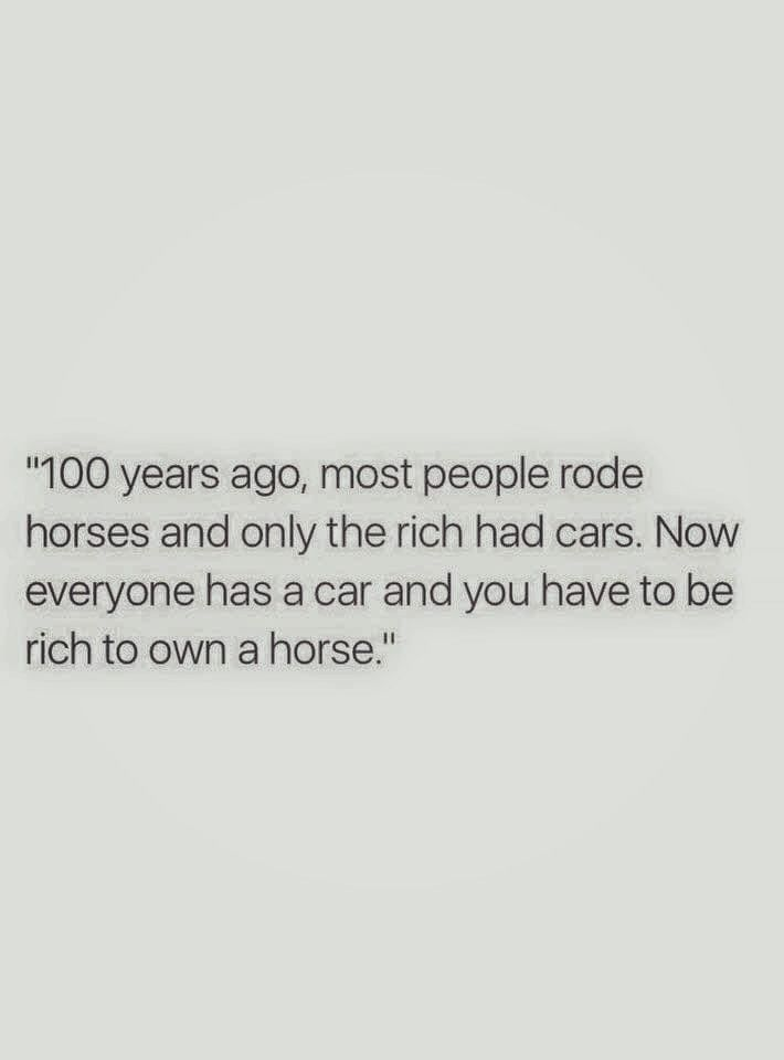 ...well, NO, you DON'T have to be rich to own a horse! They're a whole lot cheaper than a kid, and that's BEFORE paying for college!