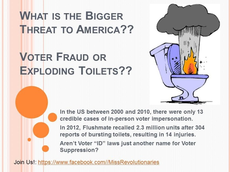 Exploding Toilets!:  Internet Site,  Website, Web Site, Politics American History