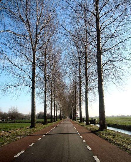 Amstelveen - Foto's SERC Nesserlaan