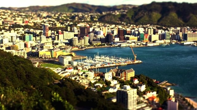 """Wellington in Miniature  ~ little wellington by Michael Jo. In 2011, Lonely Planet has named Wellington as the 4th top city in the world to visit and refers to it as """"the coolest little capital in the world""""."""