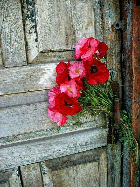 Tuscany........The vineyard door