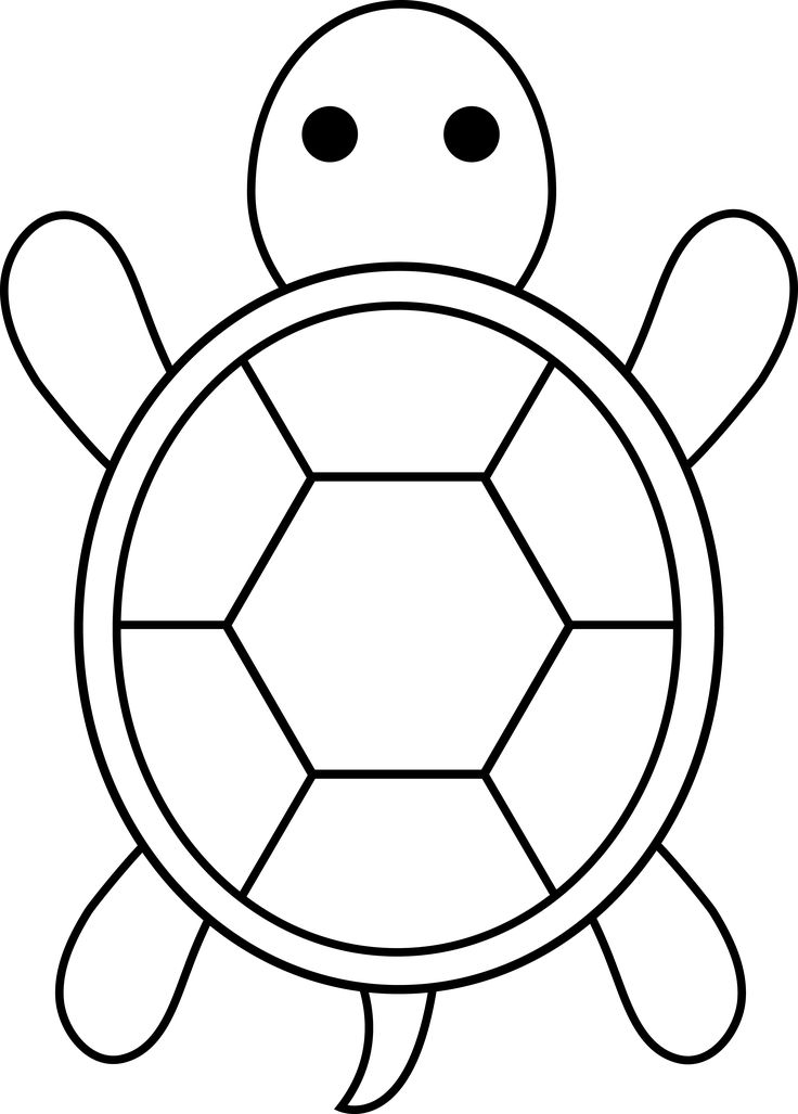 Turtle For Applique Easy Coloring