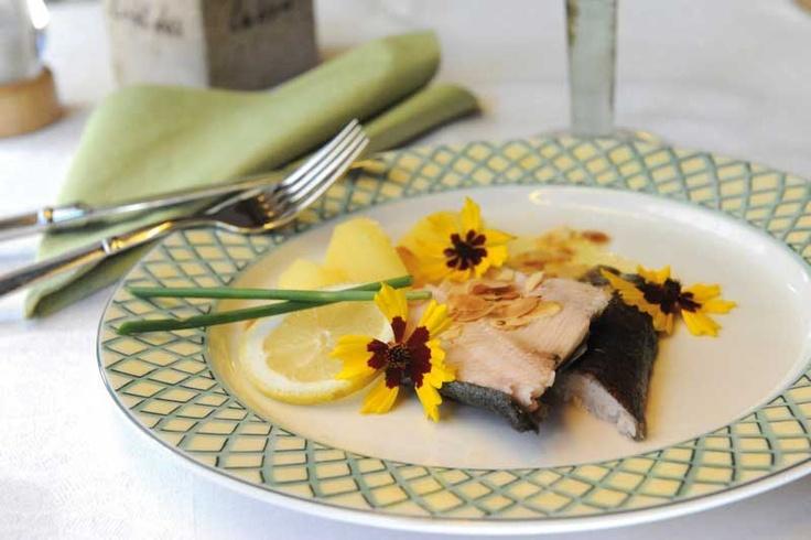 http://www.biohotels.info/de/urlaubsthemen/kulinarium/