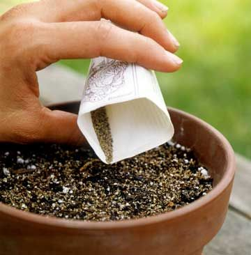 Tips for container gardening with herbs.
