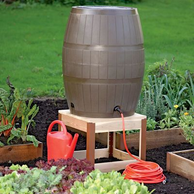 I want this rain barrel and this garden!!
