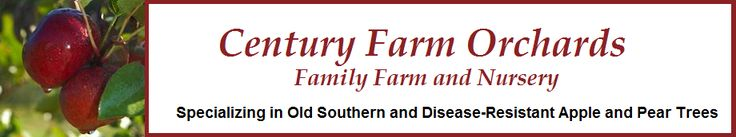 Century Farm Orchards: Apple Tree Nursery. Family nursery in Reidsville, NC carrying Southern heirloom apples, figs and pears...great products at fair prices. Dave is highly recommended. Asgard Farm has over a dozen apple trees from Century Farm Orchards growing on property.