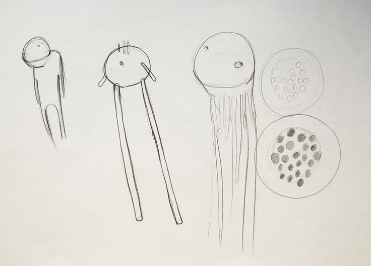 Light Creatures plans