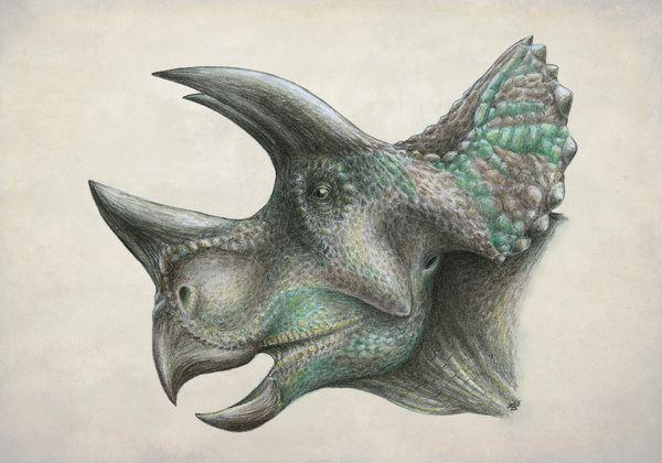 Новый мезозойский великан динозавр, рисунок, цветные карандаши, палеонтология, новости