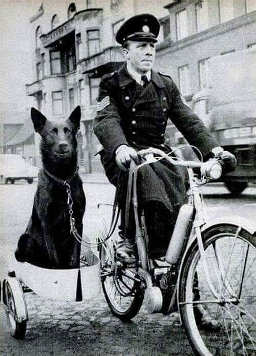Early Police Team