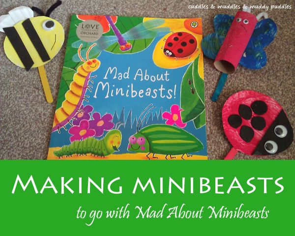 Making minibeasts – crafts to go with Mad About Minibeasts