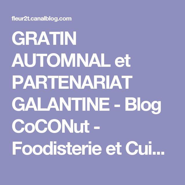 """GRATIN AUTOMNAL et PARTENARIAT GALANTINE - Blog CoCONut - Foodisterie et Cuisine """"Home Made"""""""