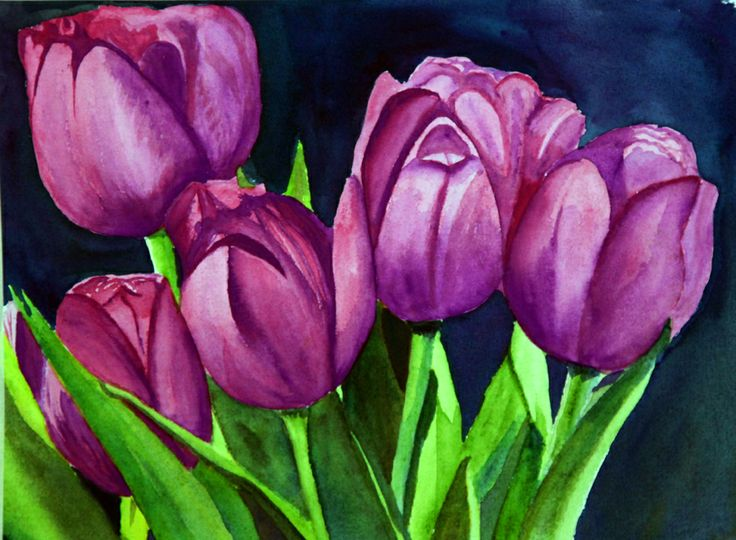 Purple Tulips | Beachwalk Images