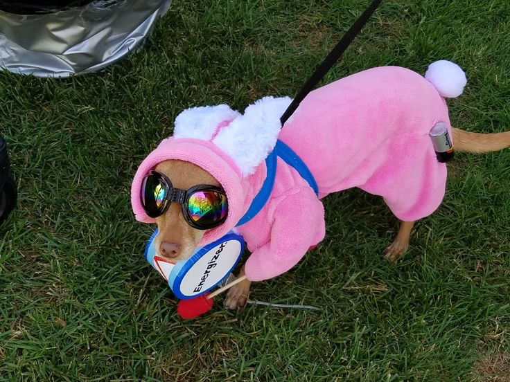 My Fergie in the Energizer Bunny costume I made her.