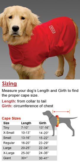 """""""Wrap this cape around your dog to help reduce stress and anxiety.   98% effective!"""" uhh the dog looks like it basically wants to kill itself hahaha"""