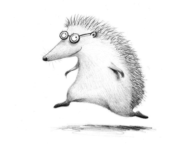 Izzy the hedgehog – andrearingli illustration