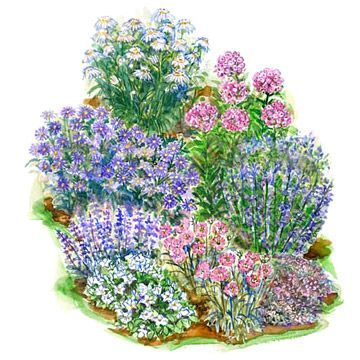 Create a cooling effect during hot summer days with this beautiful small garden plan: http://www.bhg.com/gardening/plans/by-size/small-garden-plans/?socsrc=bhgpin042514pastelsummersmallgarden&page=6