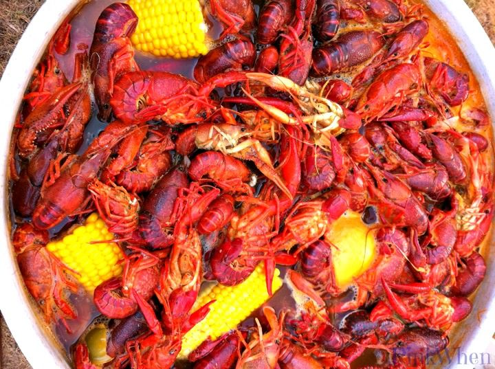 Best 25 how to cook crayfish ideas on pinterest cooking crawfish boil recipe ccuart Images